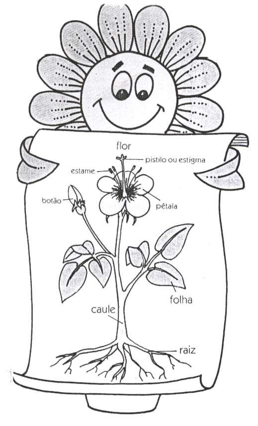 Super História da Planta, poesia infantil de Ofélia e Narbal Fontes  EF32