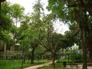 Jardim, vista geral, Casa de Rui Barbosa
