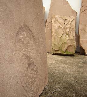 Pedra com imagem de urina de dinossauro