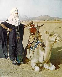 morocco-tuareg