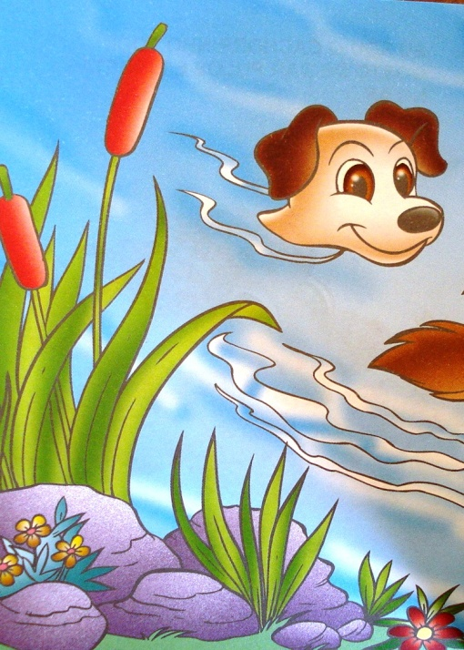 cachorrinho-nadando-mw-editora-e-ilustracoes