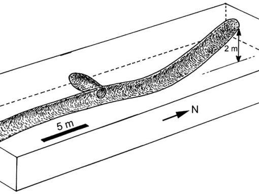 Gráfico da extensão e formato dos túneis na paleotoca.