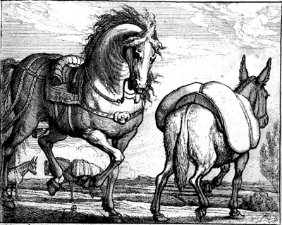 horsedonkeybarlow_400