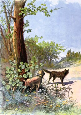 dog and wolf,george fairpont