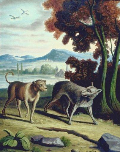 dog & wolf