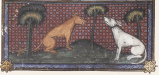 loup-chien-esope, moyen age