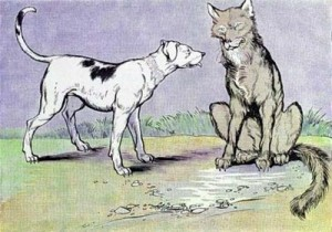 the-dog-and-the-wolf-300x210