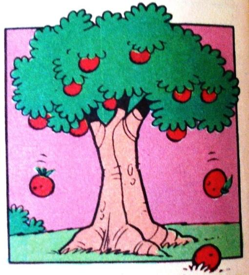 arvore com frutos