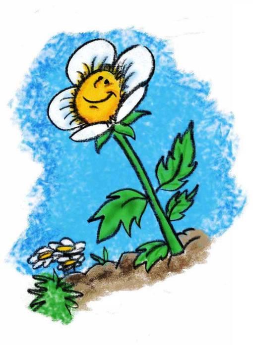 flor feliz