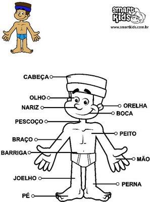 Corpo Humano  Em Versos Infantis De Walter Nieble De Freitas