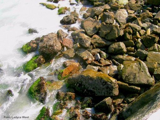 pedras e mar [Leme]
