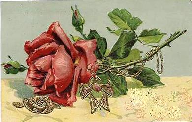 rosa cartão postal 1909