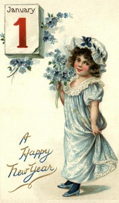1 de janeiro, flores azuis
