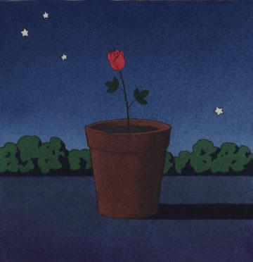 flor, Yan Nascimbene