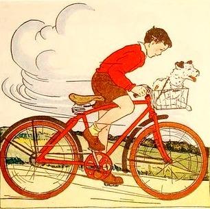 bicicleta, com cachorro na cestinha