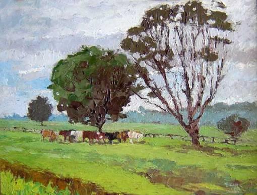 Ferenc Kiss, Fazenda Torrão de Oouro, 1990, osm, 24x33