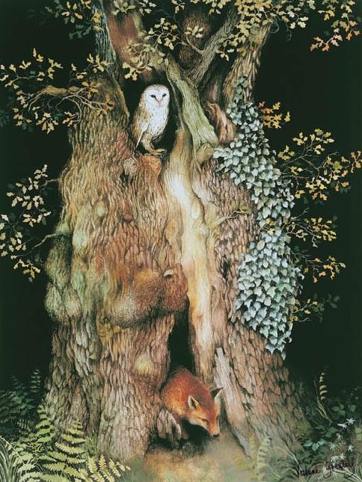 árvore. valerie greeley