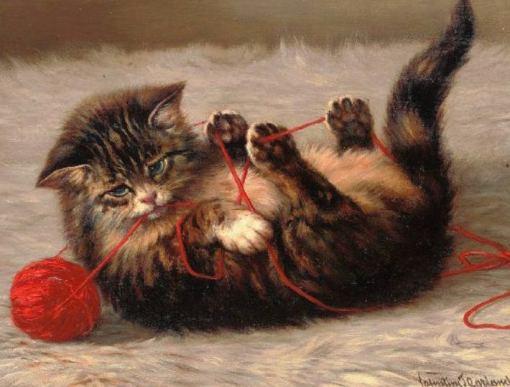 Animal - Cat - Kitten, cat's cradle
