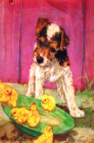 cachorrinho e pintinhos, Diana Thorne