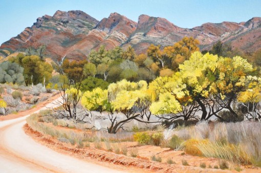Acacias-in-Flower-Moralana-Scenic-Drive-800x531Kevin waters