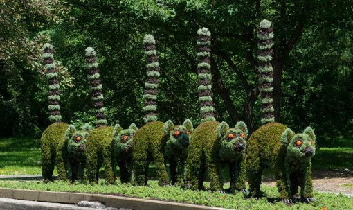 massive-hordicultural-sculptures-in-montreal-designboom-15