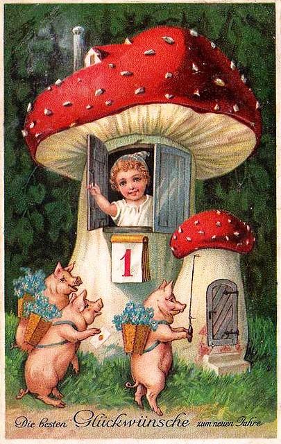 1 de janeiro, 10, com porquinhos e cogumelo