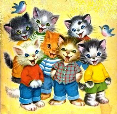 7 gatinhos