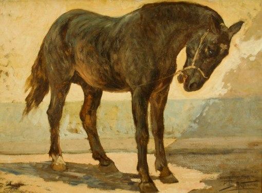 ANTONIO PARREIRAS - (1860 - 1937) - Cavalo - osm - 50 x 70 - cid
