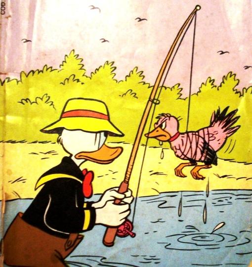 pesca donald