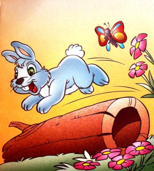coelhinho Lino e a borboleta, M W Ilustrações