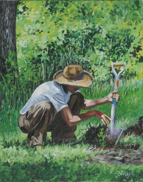 john a copley (EUA) seedling_jpg