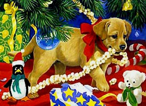 cachorrinho-x-maspopcornstring
