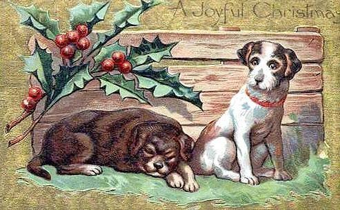 cachorro-antigo-natal