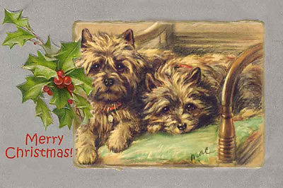 cairn-terrier-dogs-watiting-for-santa-vintage