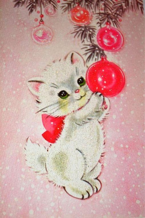 gatinho-branco-e-bola-vermelha