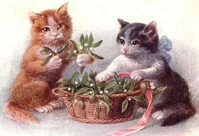 gatinhos-dois-deles-com-cesto-e-fita-rosa