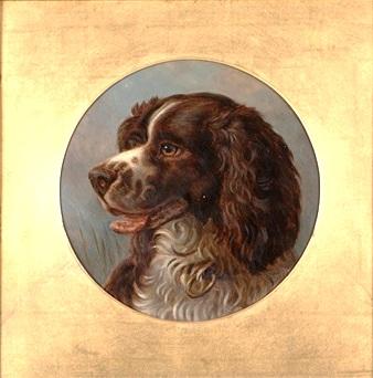 alfred-richardson-barber-portrait-of-an-english-springer-spaniel