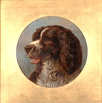 alfred-richardson-barber-portrait-of-an-english-springer-spaniel