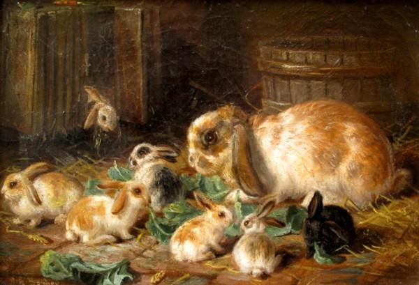 Barber, coelhos comendo