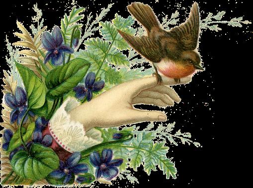 Bird-Hand-Victorian-GraphicsFairy