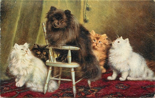 Dog-and-Cats-Agnes-Augusta-Talboys