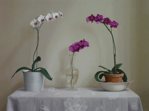 Renato Meziat, (Brasil, 1952) Orchids on a Table, Ost, 2013, 34 x46 inches