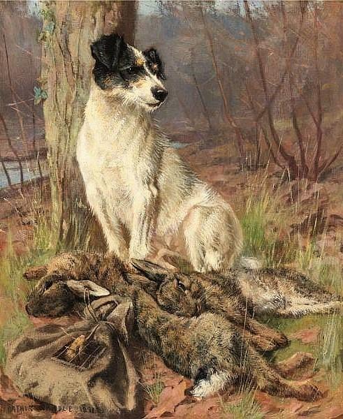 terrier e caça