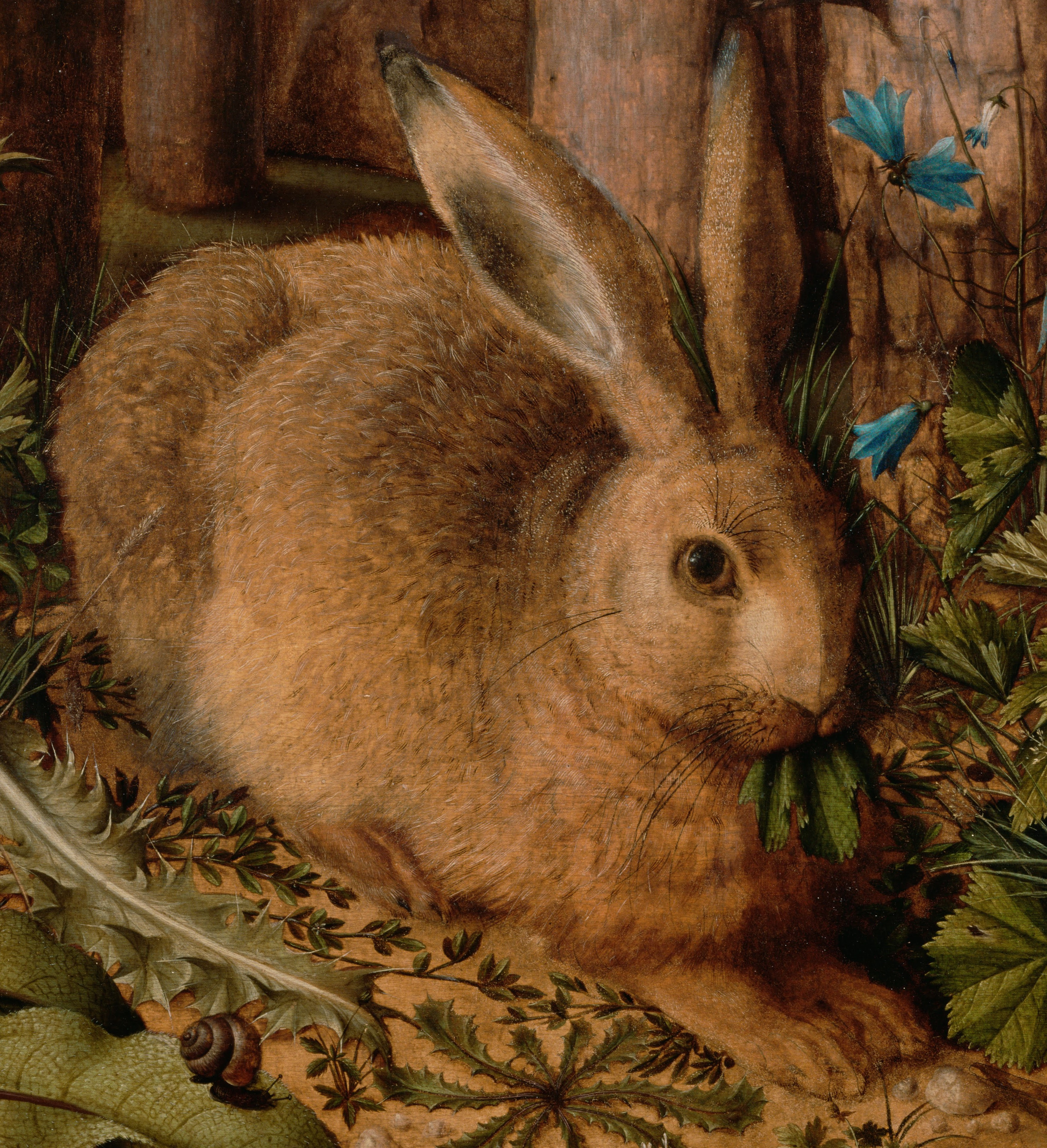 Hans_Hoffmann_(German_-_A_Hare_in_the_Forest_-_Google_Art_Project (2)