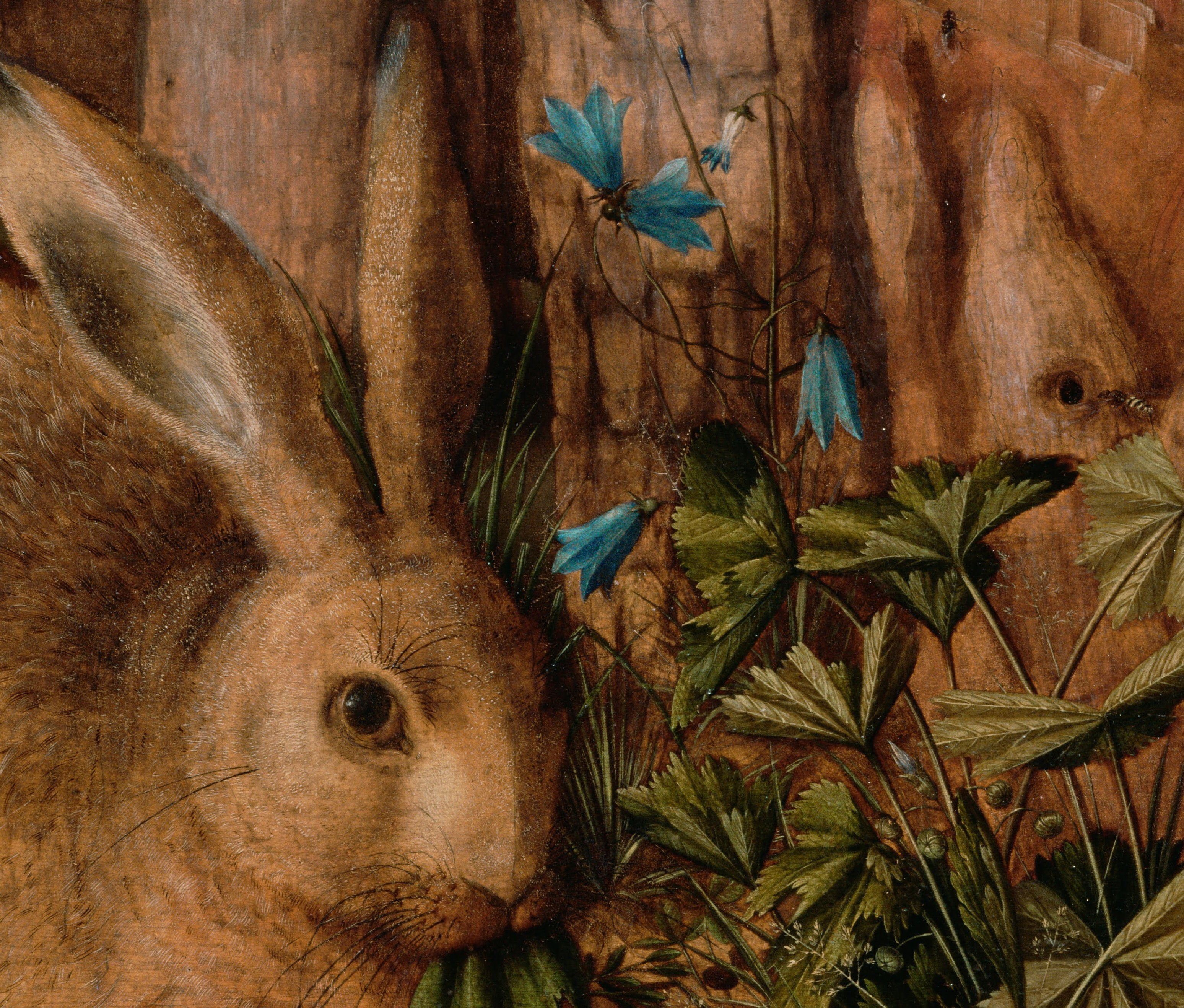 Hans_Hoffmann_(German_-_A_Hare_in_the_Forest_-_Google_Art_Project (7)
