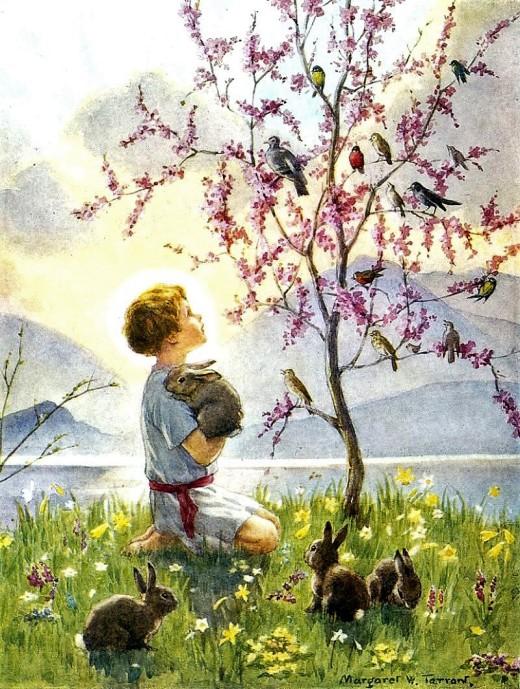 primavera, passarinhos, colehinho, menino, Margaret W Tarrant