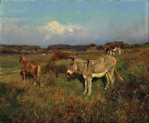 um ponei e burricos