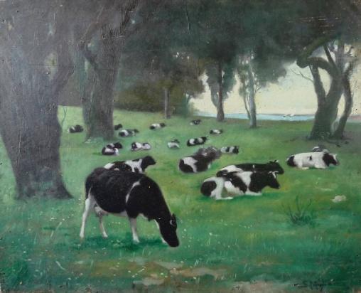 SERGIO MIGLIACCIO Vacas no pasto, osm, 50x62cm, assinado
