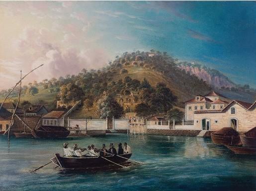 J. Ziegler,Gamboa,Óleo sobre cartão,1824,Assinado, datado 1824 inferior direito,37 x 48 cm