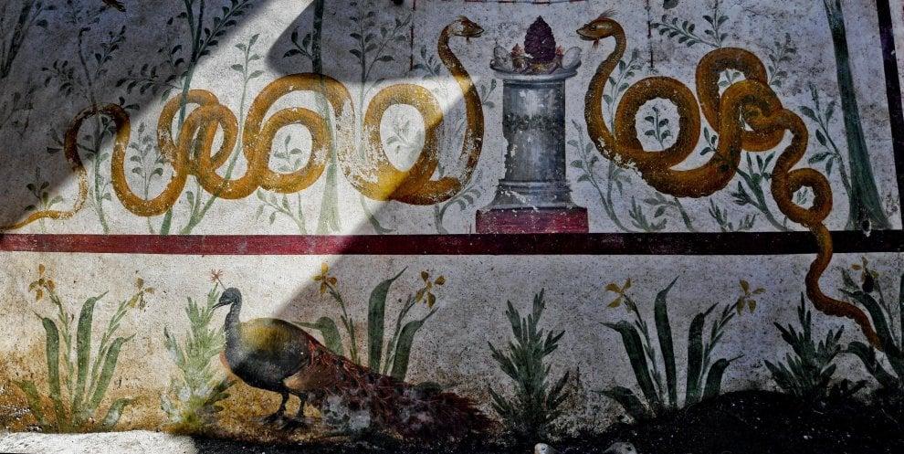 pompeia 6a